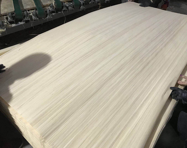 科技杨木木皮